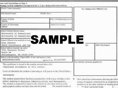 幼儿园填写报名表格